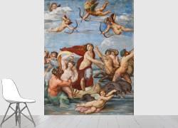 The Triumph of Galatea (Raphaël) - Muzeo.com