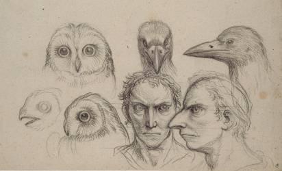Deux études de têtes de corbeaux, deux études de têtes d'homme (Le Brun Charles) - Muzeo.com