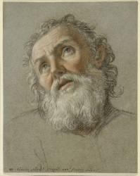 Etude d'une tête de saint en extase (Coypel Noël-Nicolas...) - Muzeo.com