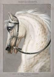 Harnachement de Troupe des Corps de grosse Cavalerie (Vernet Antoine Charles...) - Muzeo.com