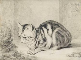 Le chat couché (anonyme) - Muzeo.com