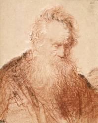 Tête d'un vieillard (Rembrandt Harmensz van Rijn) - Muzeo.com