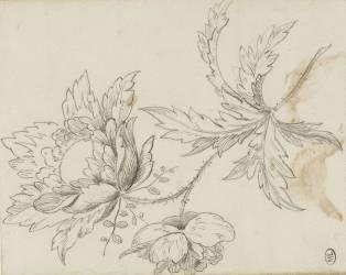 Carnet : étude de fleur (Bonnat Léon Joseph Florentin) - Muzeo.com