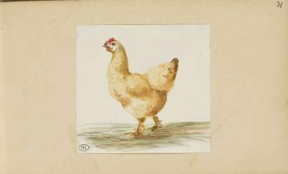 Carnet : poule (Bonnat Léon Joseph Florentin) - Muzeo.com