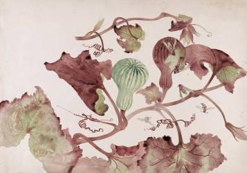 Courge et guêpes (Gallé Emile (atelier de)) - Muzeo.com