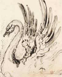 Etude de cygne pour Léda (Moreau Gustave) - Muzeo.com