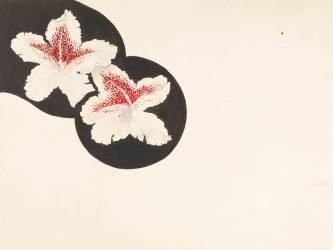 Etude de deux fleurs d'iris (?) (Gallé Emile (atelier de)) - Muzeo.com