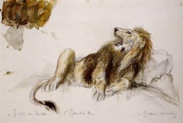 Etude de lion (Moreau Gustave) - Muzeo.com