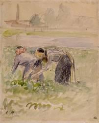 La Cueillette des pois (Pissarro Camille) - Muzeo.com
