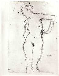 Nude (Klimt Gustav) - Muzeo.com