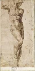Etude d'homme nu debout, le corps est nu vu de face, la tête de profil (Michel-Ange (dit),...) - Muzeo.com