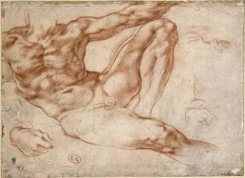 Figure d'Adam à la Chapelle Sixtine (Michel-Ange (dit),...) - Muzeo.com