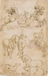 Courrier monté sur un cheval qui galope, étude de chevaux (De Vinci Léonard) - Muzeo.com