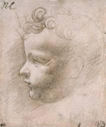 Etude pour L'Enfant Jésus de Vierge aux Rochers (Louvre) (De Vinci Léonard) - Muzeo.com