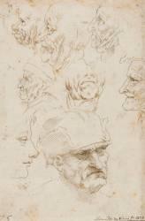 Etudes de têtes (De Vinci Léonard) - Muzeo.com