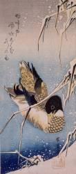 Duck and reeds (Hiroshige) - Muzeo.com