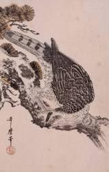 Falcon on a pine branch (Kitagawa Utamaro) - Muzeo.com