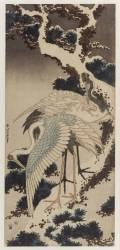 Cranes (Hokusai) - Muzeo.com