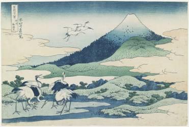 The fields in the hamlet of Umezawa in Sagami Province (Hokusai) - Muzeo.com