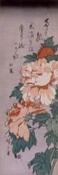 Peonies (Hiroshige) - Muzeo.com