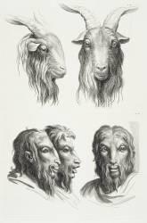 Planches 21 a et 21 b : deux têtes de bouc et trois têtes d'hommes en relation avec le bouc (Le Brun Charles) - Muzeo.com