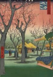 Plum Garden in Kamata (Hiroshige) - Muzeo.com