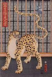 Wild tiger (Kunimaro Utagawa) - Muzeo.com