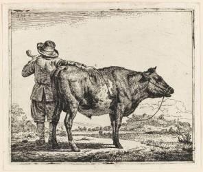 Le vacher et le taureau (Van de Velde Adriaen) - Muzeo.com