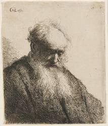 Vieillard à la longue barbe blanche et à la tête penchée (Rembrandt Harmensz van Rijn) - Muzeo.com