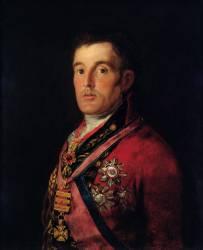 The Duke of Wellington (Francisco de Goya) - Muzeo.com