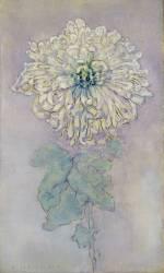 Chrysanthemum (Piet Mondrian) - Muzeo.com