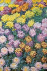 Massif de Chrysanthemes (Monet Claude) - Muzeo.com