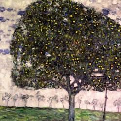 Pommier II (Klimt Gustav) - Muzeo.com