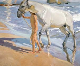 Washing the Horse (Sorolla y Bastida Joaquin) - Muzeo.com