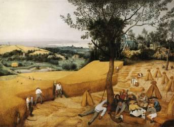 The Harvesters (Pieter Brueghel) - Muzeo.com