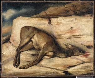Biche gisant sur un rocher taché de son sang (Decamps Alexandre Gabriel) - Muzeo.com