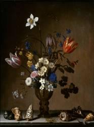 Bouquet de fleurs et coquillages (Balthasar van der Ast) - Muzeo.com