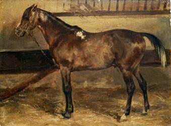 Cheval brun à l'écurie (Géricault Théodore) - Muzeo.com