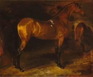 Cheval espagnol dans une écurie (Géricault Théodore) - Muzeo.com