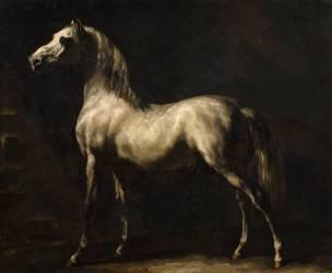 Cheval gris (Géricault Théodore) - Muzeo.com