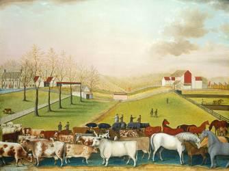 The Cornell Farm (Edward Hicks) - Muzeo.com