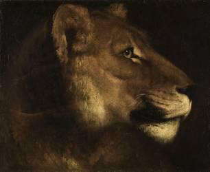 Tête de lionne (Géricault Théodore) - Muzeo.com