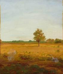 Arbre dans la lande (Redon Odilon) - Muzeo.com