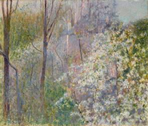 Arbres en fleurs (Serafino Macchiati) - Muzeo.com