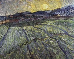 Enclosed field with rising sun (Van Gogh Vincent) - Muzeo.com
