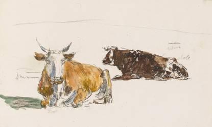 Deux boeufs couchés (Louis-Eugène Boudin) - Muzeo.com