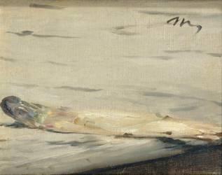 L'asperge (Manet Edouard) - Muzeo.com