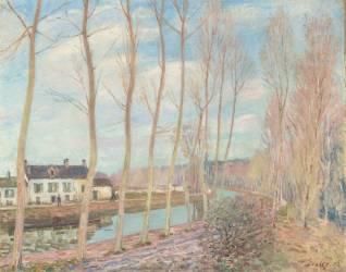 Le canal du Loing (Sisley Alfred) - Muzeo.com