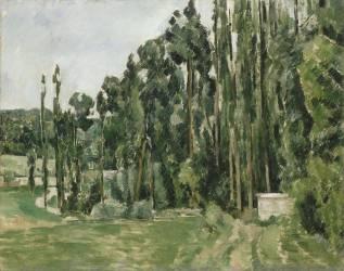 Les peupliers (Cézanne Paul) - Muzeo.com