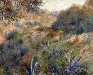 Paysage algérien, le ravin de la Femme Sauvage (faubourg d'Alger) (Auguste Renoir) - Muzeo.com